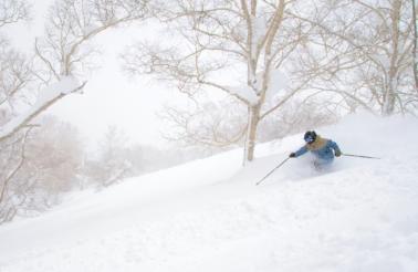 Skiing Powder Hitomi Igawa 2