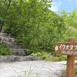 Iwaonupuri Hike