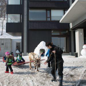 ki-niseko-reindeer-rides-1