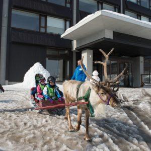 ki-niseko-reindeer-rides-3