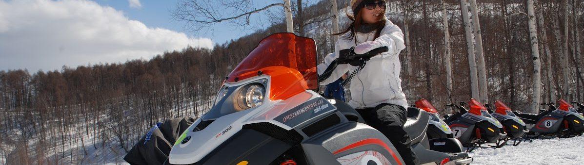 Snowmobiling Hero