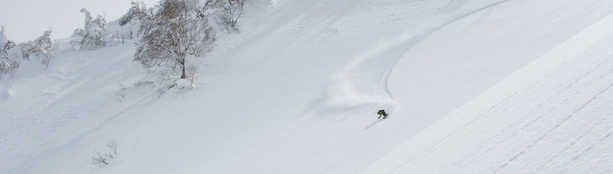 news-niseko-numbers