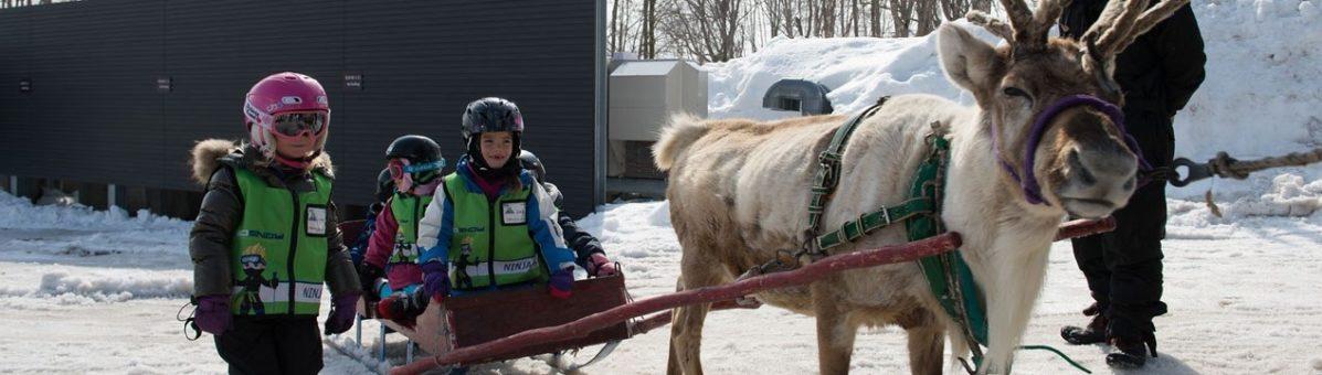 reindeer-hero