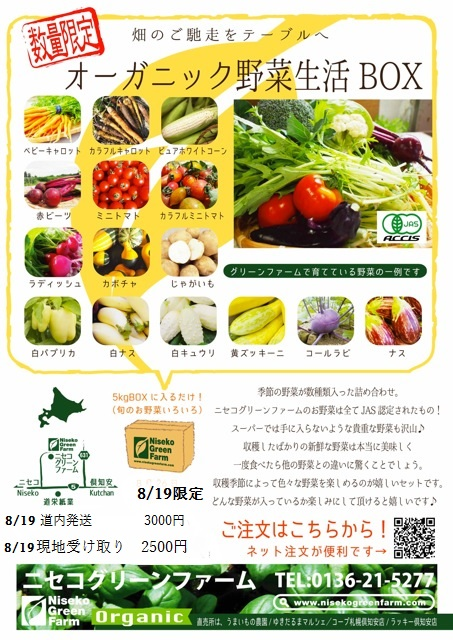 2016野菜 Boxチラシ 819比羅夫