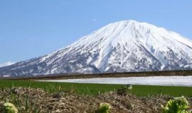 Mt Yotei Spring