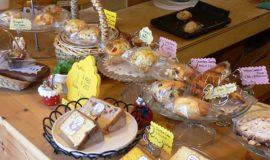 muffin-scorn-mariposa