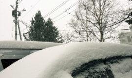 snow4 1