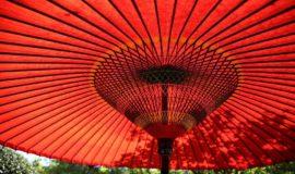 Umbrella 1031413 960 720