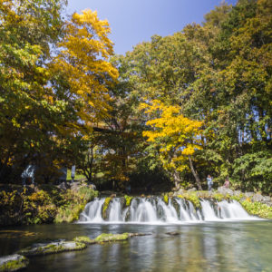Fukidashi Park springs.