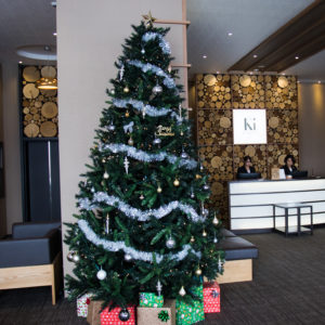 Ki Niseko Christmas Tree 12 08 17 1