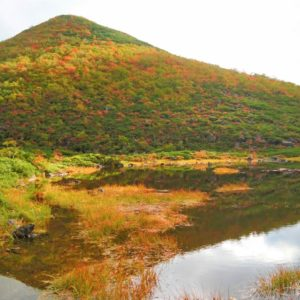 Mt Shirakaba Shakunage Numa Hike Shakunage Numa