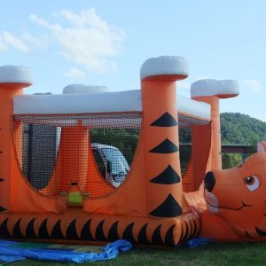 The kids can have fun bouncing for hours.