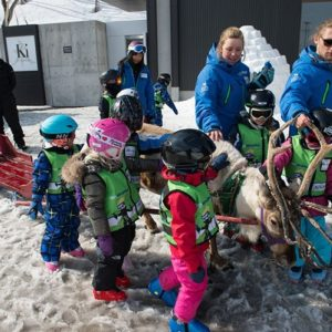 GoSnow Ninja Kids take a reindeer ride at Ki Niseko!