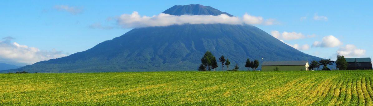 Mt Yotei Summer
