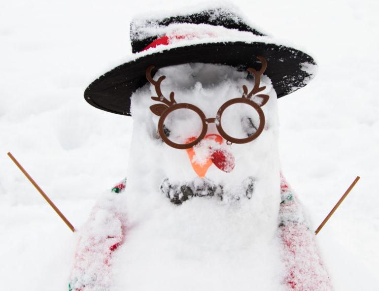 Snowman 12 16 17 2