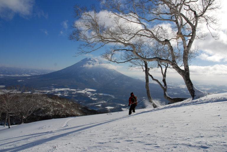 Blue bird spring skiing