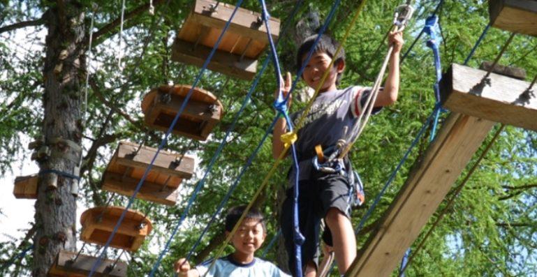 tree-trekking-niseko