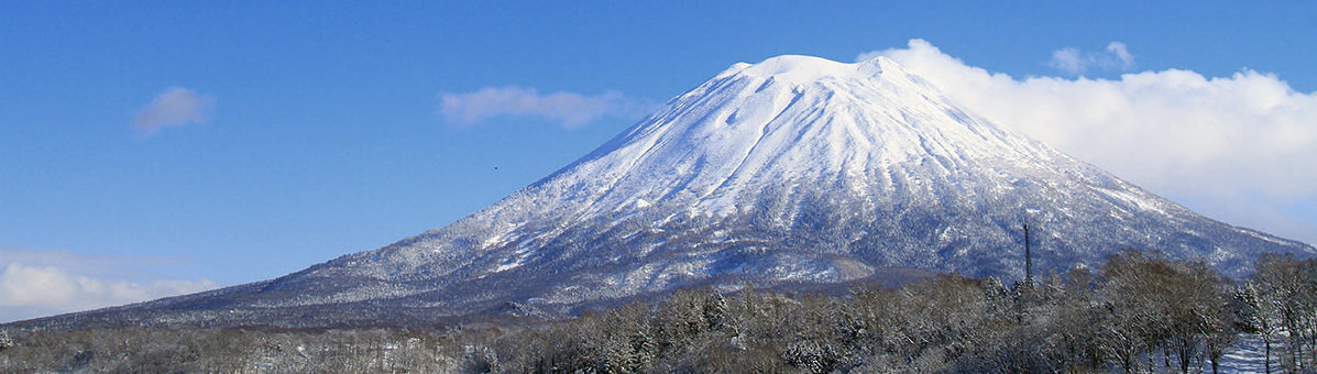 Mt Yotei Winter Crop